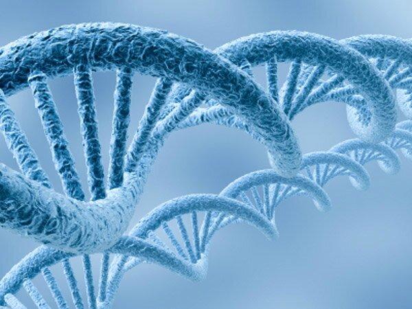 Les pratiques de developpement personnel modifient notre ADN