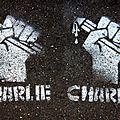 Hommage Charlie Hebdo_7923