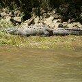 Sailing through a canyon near San Cristobal de Las Casas - Crocodile