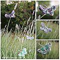 Papillonages