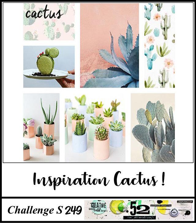 S249 Cactus 2