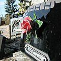Cimetière de l'église de Vals en Ariege Fleurs (0) 800x600