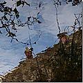 Deux punaises d'eau pêchent dans le ciel des