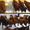 Les canards et autres viandes laqués
