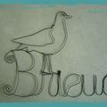 Brieuc
