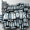 Parce que nous avons aussi une pal numérique (1 mois*1 ebook) septembre 2013