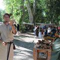 Thibeau le jongleur Baucéant 2011