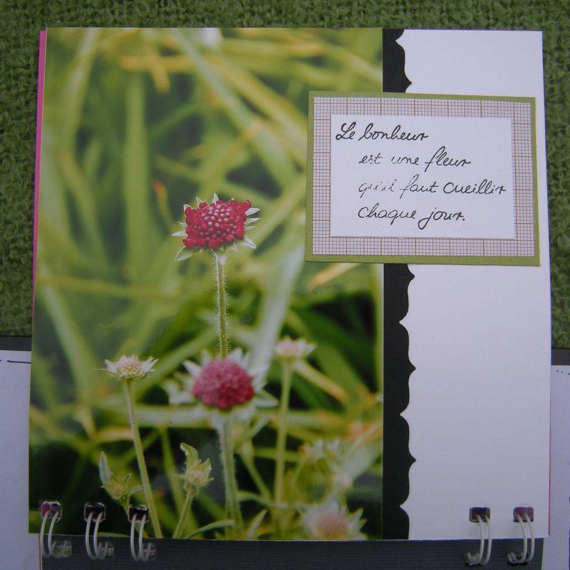 Un jardin en campagne (33)