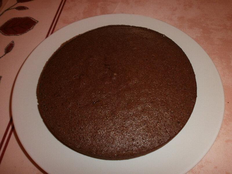 Gâteau léger au chocolat (2)