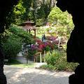 Powerscout gardens