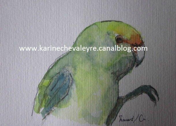 """""""Le Perroquet Vert"""""""