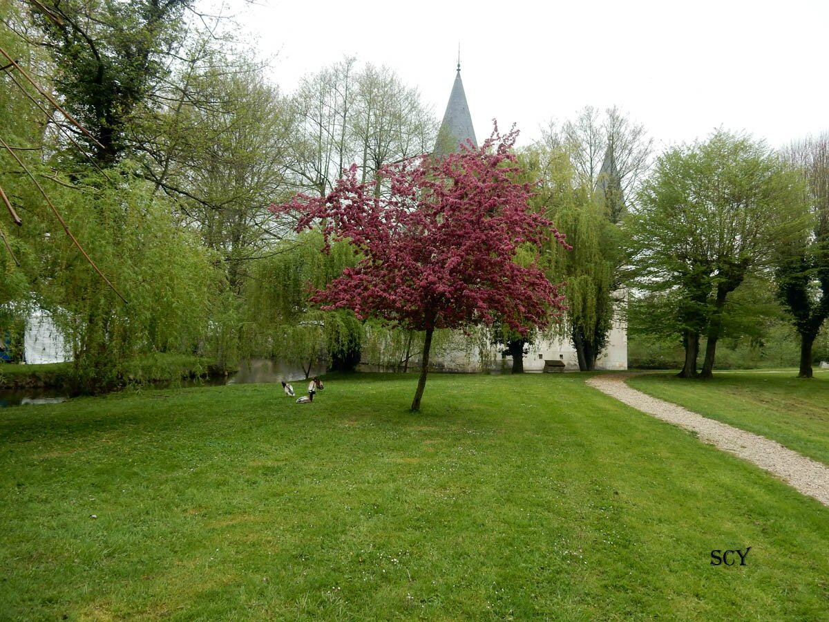 Parcs et Jardins LISLEDON 45 (8)
