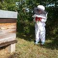 Combi d'apiculteur
