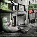 creativewwfcampaigns03