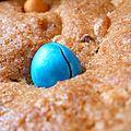 De la couleur en hiver : le brookie aux m&m's