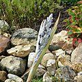 fleur de thalia