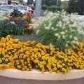 fleurs de la Ville à côté de la poste
