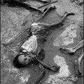 genocide 22