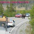 bison futé2