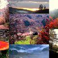 Au fil des saisons ... dans les montagnes du soir