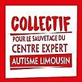 Vidéo sur le fonctionnement du centre expert autisme limousin