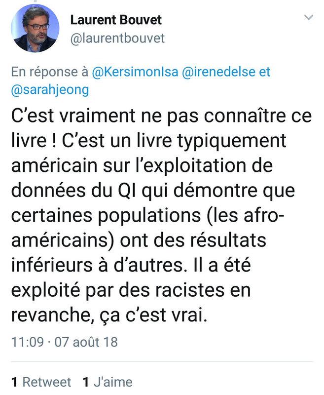 LaurentBouvet-NoirsQI-Inférieur