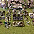 Warmaster bretonnie