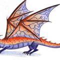 dragon7
