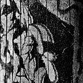 dark_textured_background10