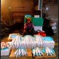 L'incroyable marché au poisson de busan