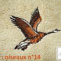 Réf : oiseaux n°14